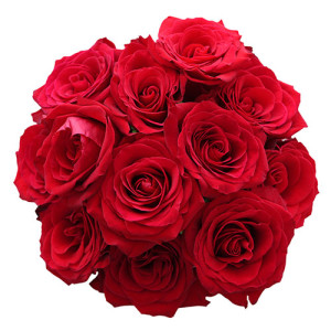 roses_img